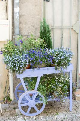 Flower display in Uzes